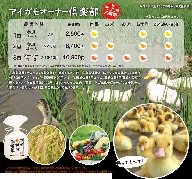 夏の農業体験会:参加者募集中!