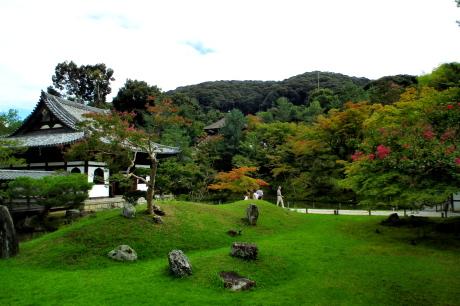 雨の京都を散策するなら?
